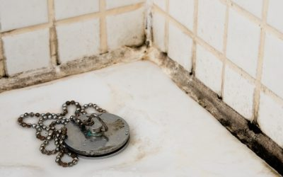 How to prevent bathroom mould