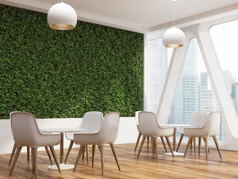 green feature wall in small business style restaurant