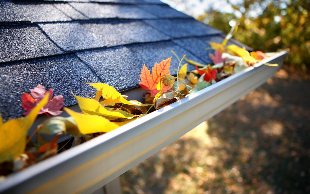 How to keep your gutters in tip top shape